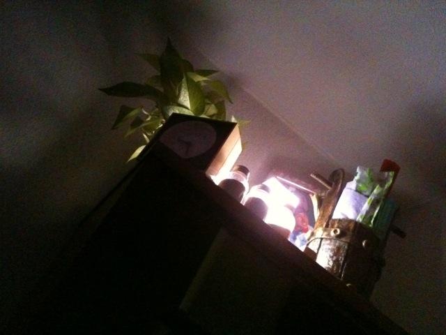 ライトを夜モードへ。