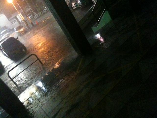 豪雨にやられた。
